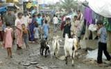 Đến Ấn Độ ở trong khu ổ chuột - Ảnh 2.