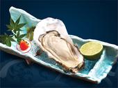 Không chỉ có kích thước to, hày Magaki còn ghi điểm nhờ vị ngọt thơm được ví như sữa của đại dương.