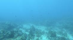 Du lịch Philippines phải ghé đảo Boracay thuộc hàng đẹp nhất châu Á - ảnh 4