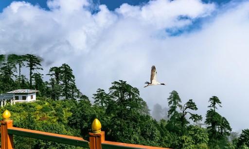 Mua tuyet roi tai quoc gia hanh phuc Bhutan hinh anh 11