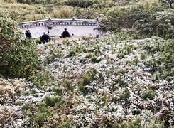 Đỉnh Fansipan âm 1 độ, băng tuyết bất ngờ xuất hiện khiến nhiều du khách thích thú2