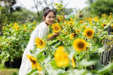 Cánh đồng hướng dương, vườn dạ yên thảo, khu Sơn nữ, vịnh tình yêu, vườn động - thực vật, khu đảo lan với hơn 8.000 chậu cùng thảm thực vật Du Long trải dài hơn 10.000 chậu hoa, cây xanh... là những điểm đến lý tưởng cho những du khách yêu thiên nhiên, hoa lá, cây cỏ.