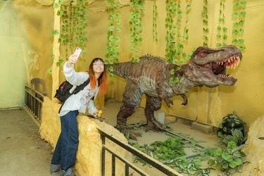 Cùng với hệ sinh thái, Bửu Long còn có các trò chơi, khu tham quan đặc sắc: công viên khủng long, cụm trò chơi cảm giác vừa và mạnh, trò chơi Kiếp luân hồi, Ngôi nhà huyền bí, rạp chiếu phim 12D, Bí mật cổ thành, cầu vồng Hoa tử đằng, bến thiên nga...