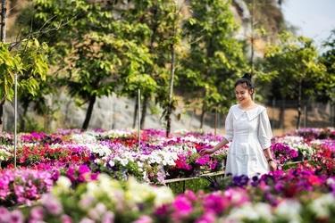 Đặc biệt nhất chính là thảm thực vật và hoa luôn tươi tốt quanh năm. Trong dịp Tết Canh Tý 2020, Bửu Long sẽ được trang trí hơn 250,000 chậu hoa trải đều khắp Khu du lịch với hơn 8.000 chậu hoa lan, cánh đồng hướng dương, thảm hoa dạ yên thảo cùng các loại hồng, cúc... chắc chắn sẽ làm nên một đại tiệc sắc và hương đầy những thú vị bất ngờ. Đặc sắc nhất là tại KDL Bửu Long thường xuyên diễn ra các chương trình ca nhạc vào chủ nhật hằng tuần và dịp lễ Tết là các chương trình đặc biệt hơn với sự xuất hiện của các ca sĩ, nhóm hài nổi tiếng.