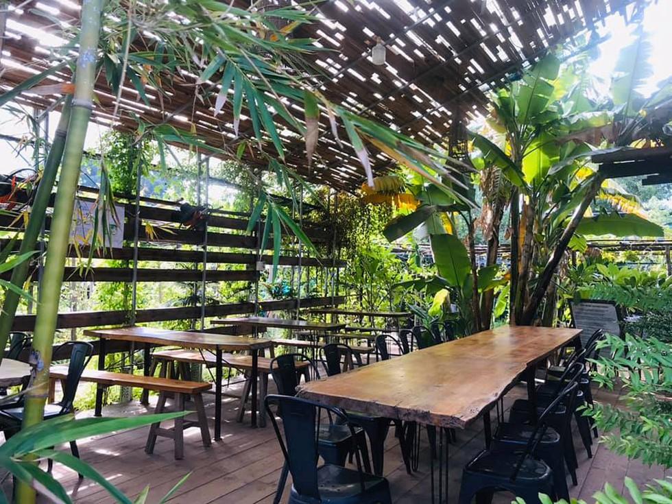 Farmstay mở cửa đón khách trở lại, thu hút người Sài Gòn - ảnh 9